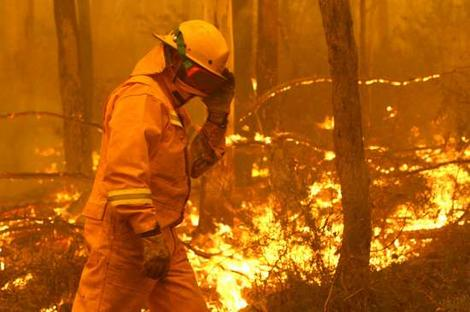 Victorian Bushfires